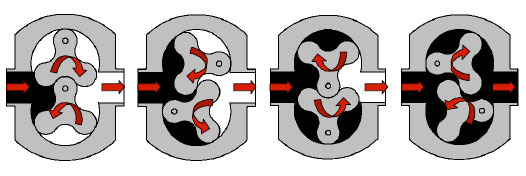 Principle of Operation Rotary Lobe Pump